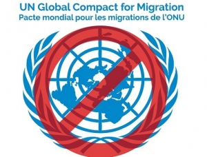 ob_6a91e9_pacte-mondial-immigration-non.jpg