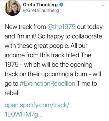 greta thunberg tweet supprimé.jpg