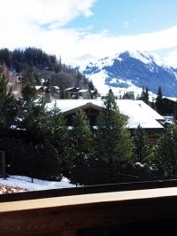 1-Les-Alpes-Bernoises-sous-la-neige-et-le-soleil-c-Gens-de-France-e1520978508323-768x1024.jpg