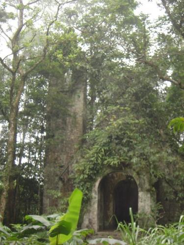 Eglise-abandonnee-2.jpg