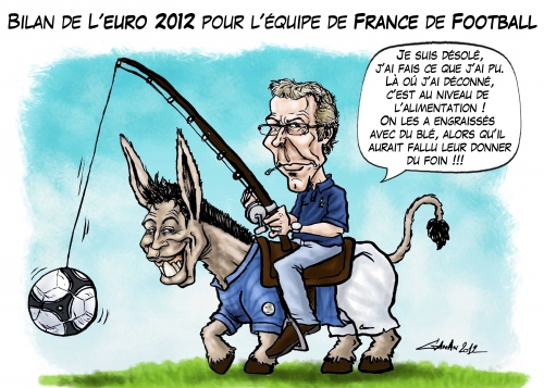 football,sport,ballon rond,laurent blanc,didier deschamps