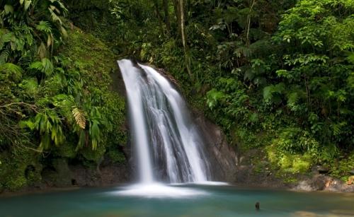 parc national de guadeloupe cascade aux ecrevisses.jpg