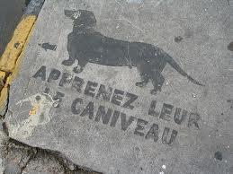 caniveau.jpg