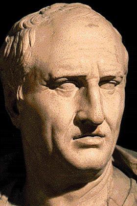 Ciceron_tete.JPG