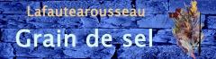 Les Rafales décollent du Charles de Gaulle : notre budget militaire lui aussi doit décoller... à 4% ! 1903076588.6