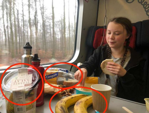 greta thunberg en train.png