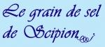 LE GRAIN DE SEL DE SCIPION.jpg