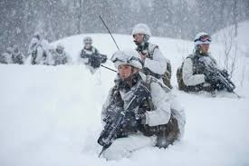 armée chasseurs alpîns.jpg