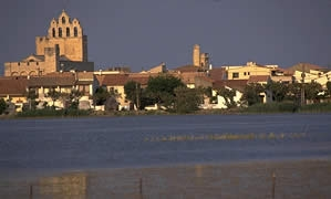 SAINTES MARIES DE LA MER.jpg