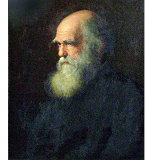 Charles_Darwin_painting_by_Walter_William_Ouless,_1875.jpg
